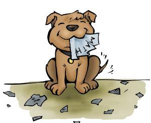 Essays my pet dog